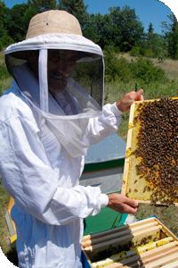 apiculteur 58