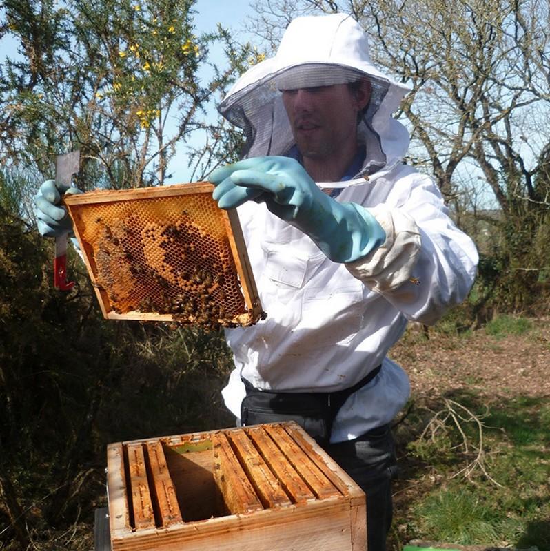 Vêtements d'apiculteur