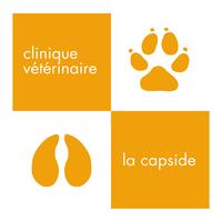 Parrainage ruche Clinique vétérinaire La Capside