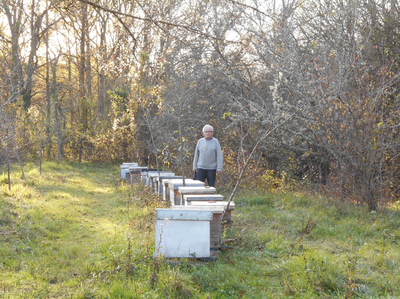 un toit pour les abeilles,parrainage,zolux,novembre,ruche