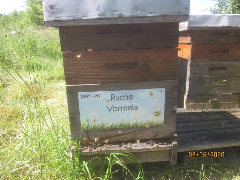 La ruche Vormela