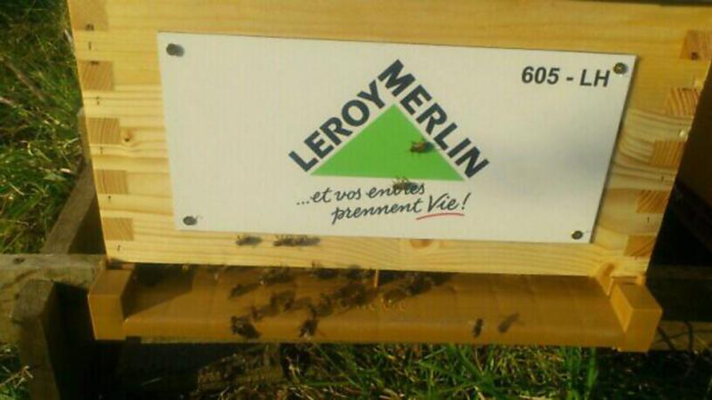 La ruche LEROY MERLIN FRANCE