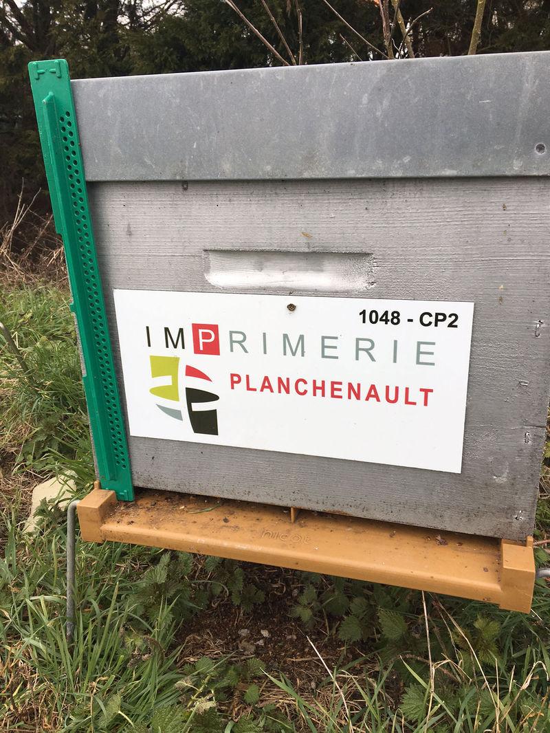 La ruche IMPRIMERIE PLANCHENAULT