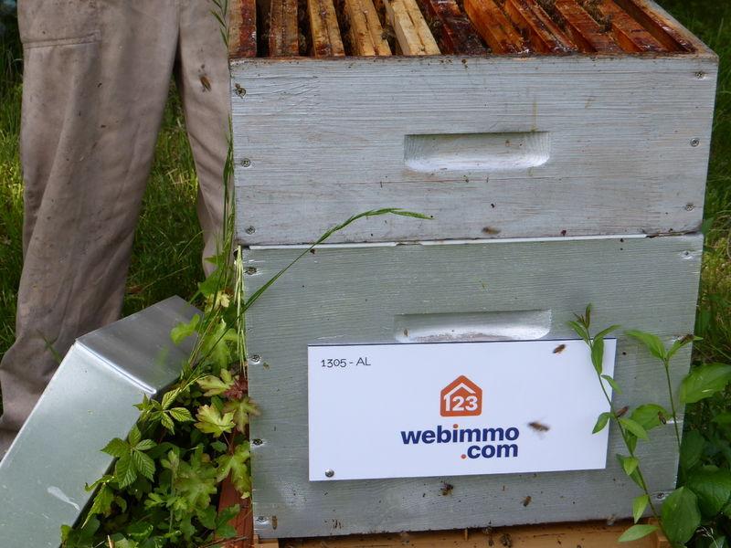 La ruche 123webimmo.com Milly-la-forêt