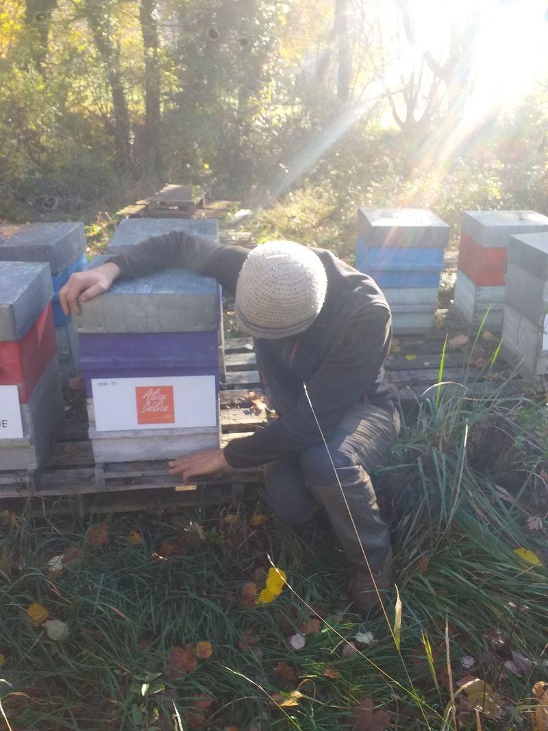 La ruche Alice Délice Annecy