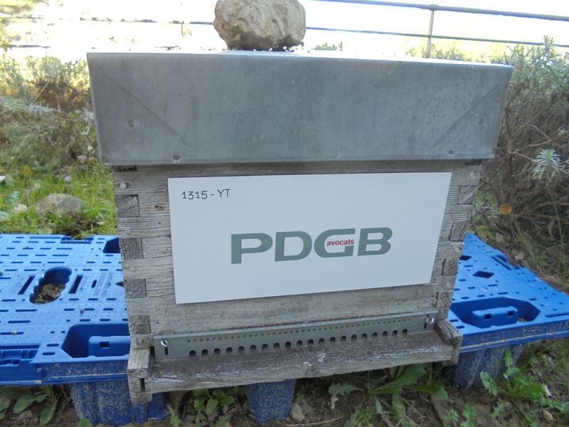 La ruche PDGB Avocats