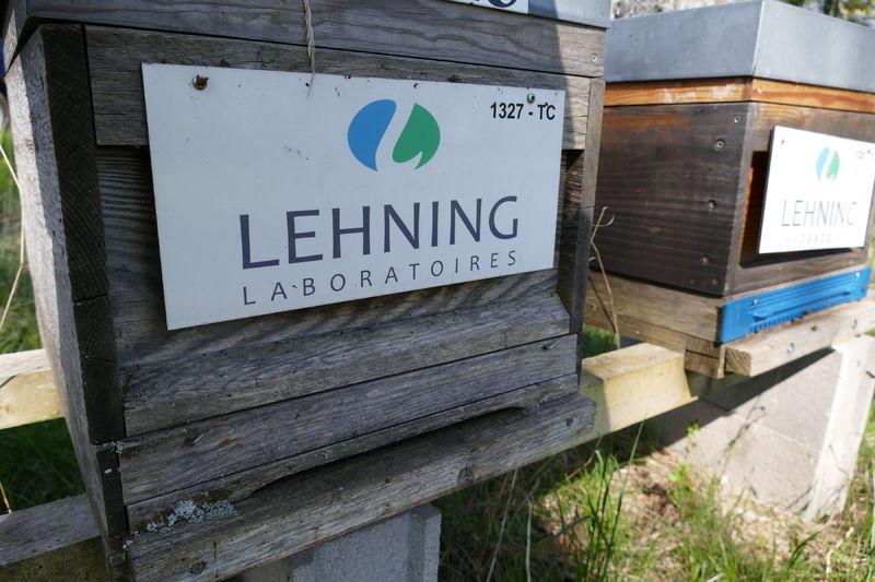 La ruche LABORATOIRES LEHNING