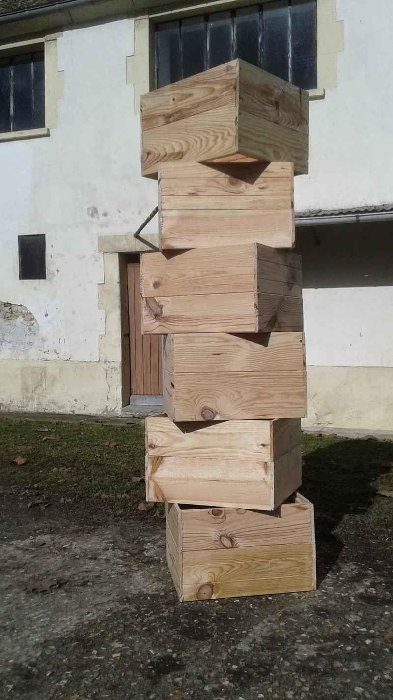 La ruche Minos