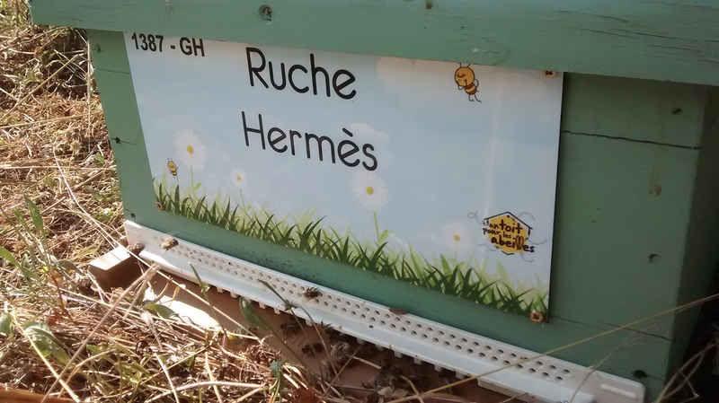 La ruche Hermès