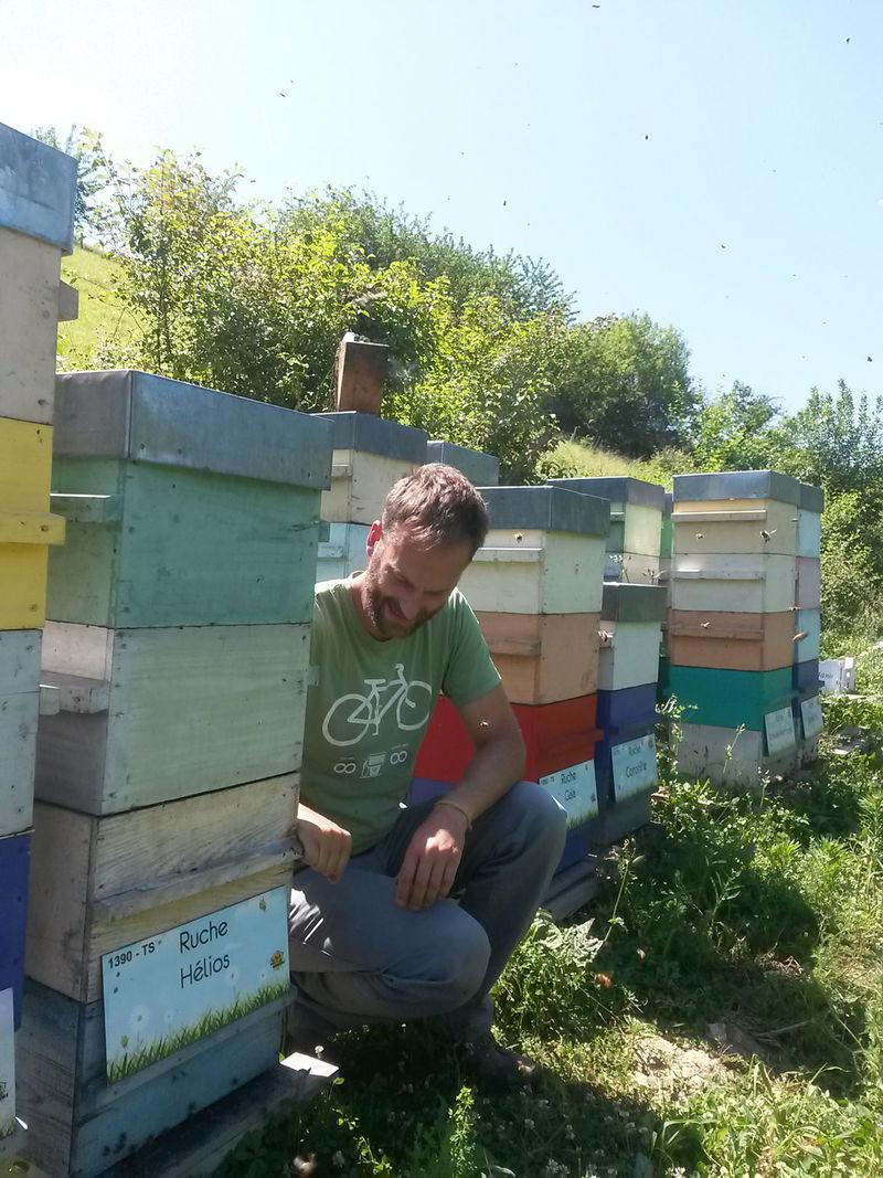 La ruche Hélios