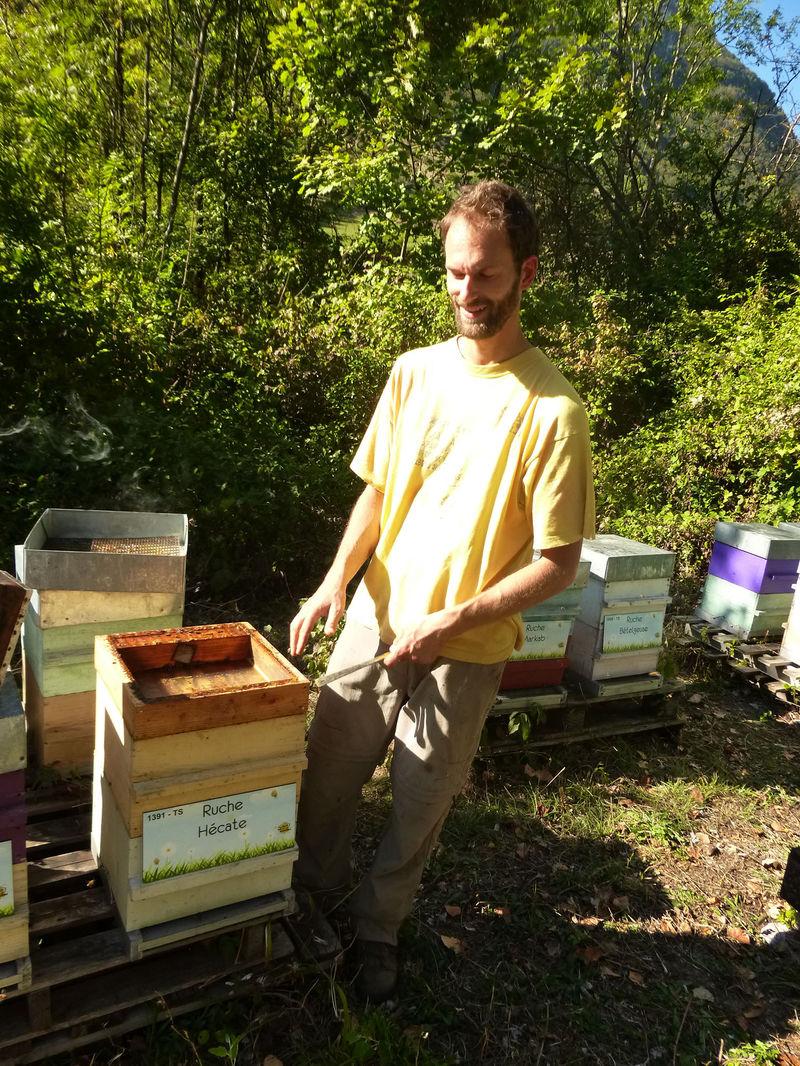 La ruche Hécate