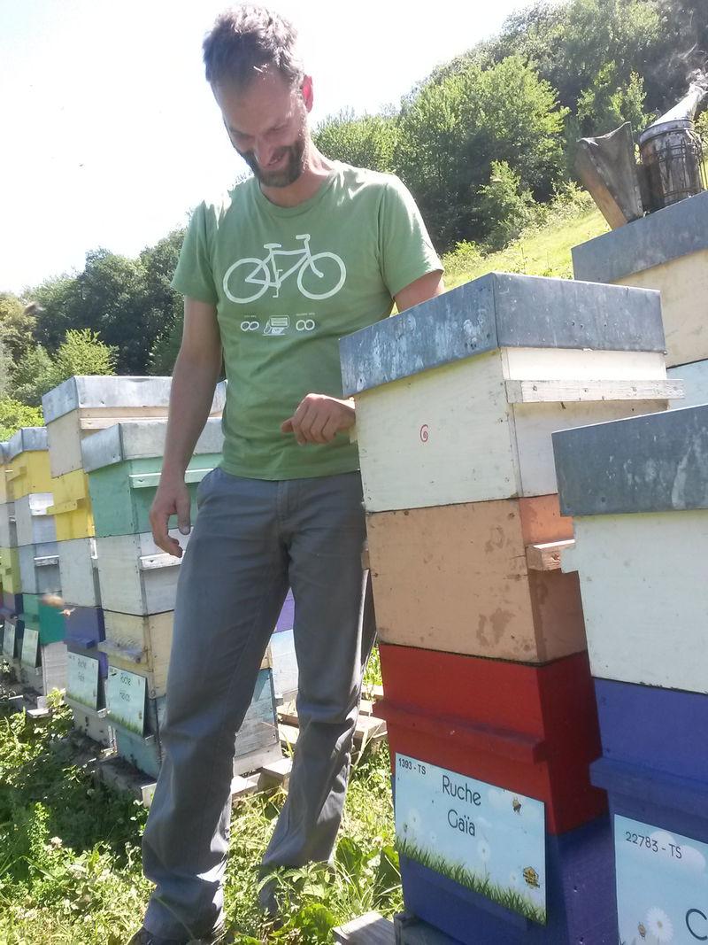 La ruche Gaïa