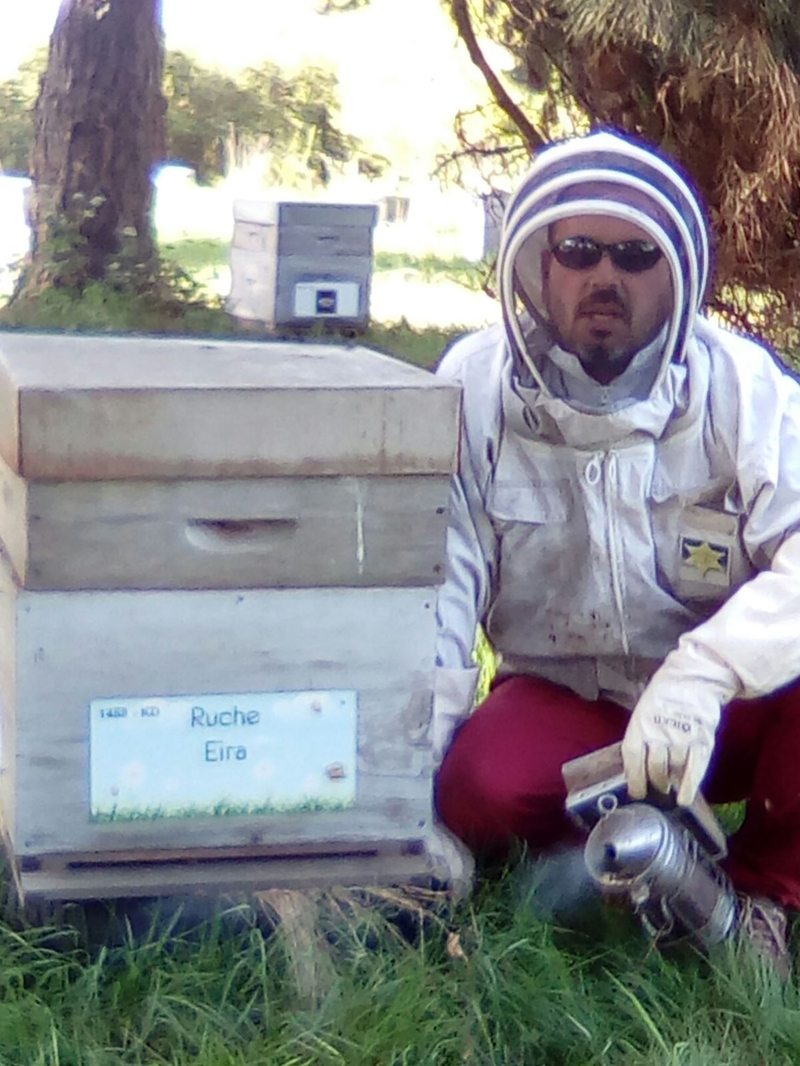 La ruche Eira