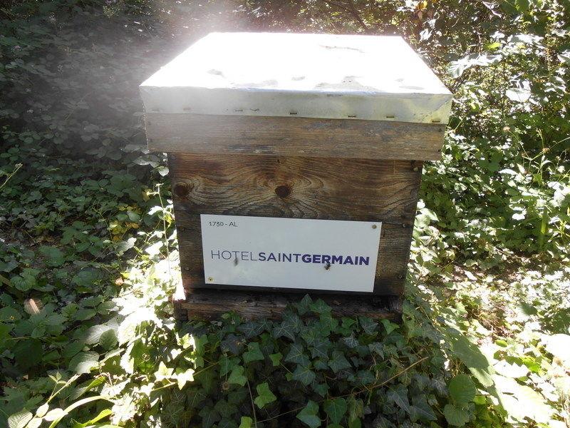 La ruche HOTEL SAINT GERMAIN