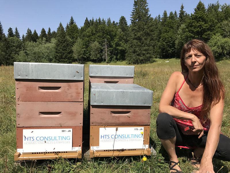La ruche HTS Consulting