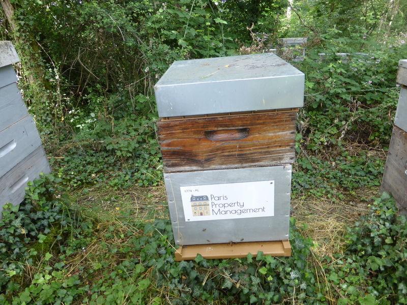 La ruche Paris Property Management