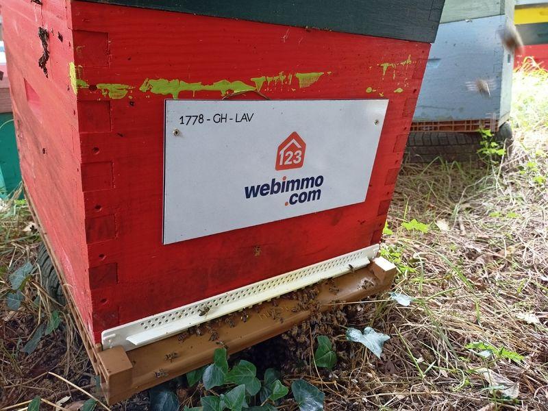 La ruche 123webimmo Toulouse Nord Ouest