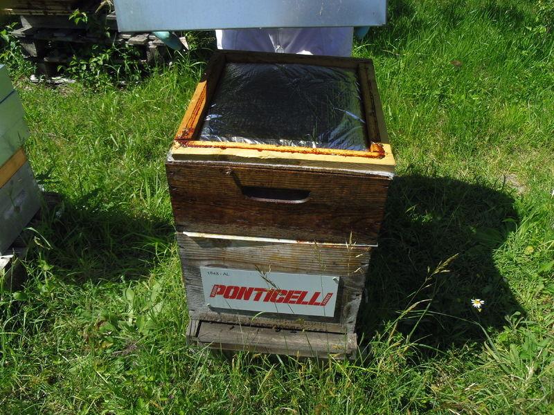 La ruche Ponticelli frères