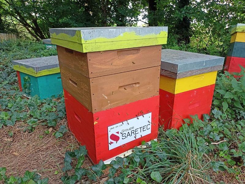 La ruche SARETEC FRANCE