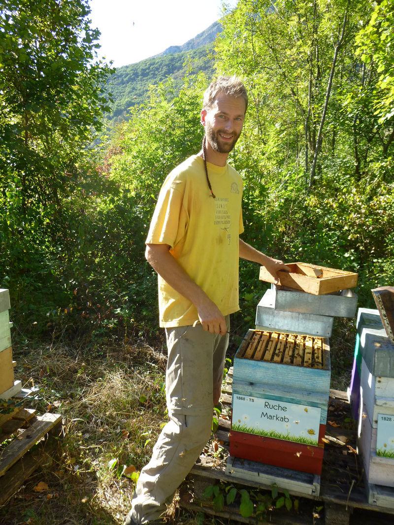 La ruche Markab