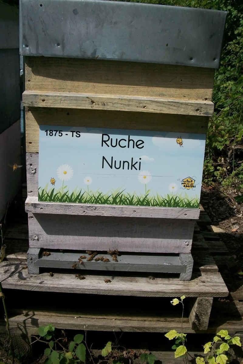 La ruche Nunki