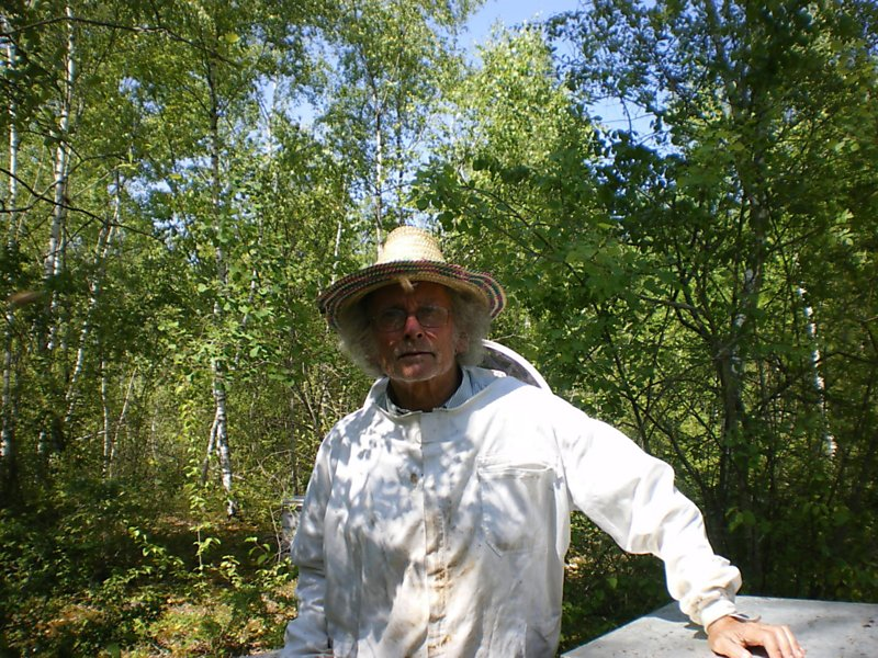La ruche Bouscarle de cetti