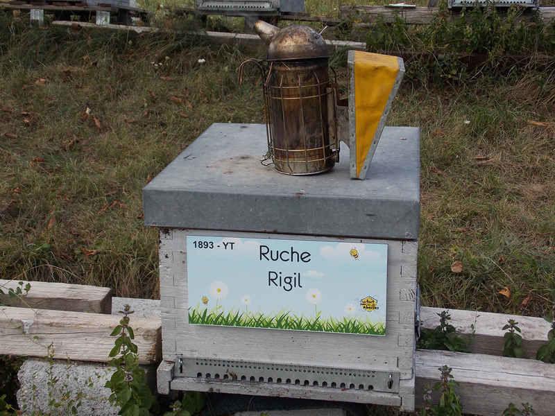 La ruche Rigil