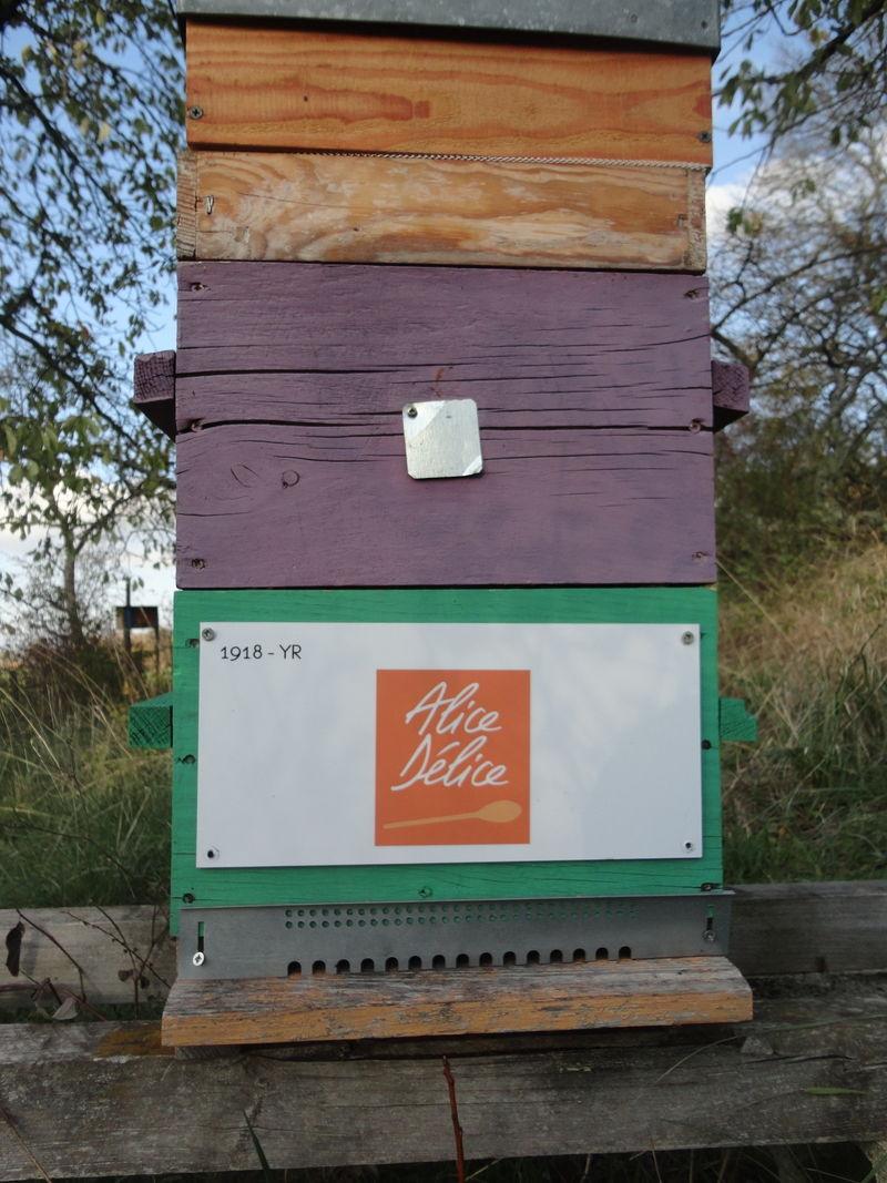 La ruche Alice Délice Dijon