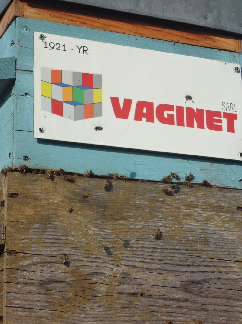 La ruche Sarl vaginet