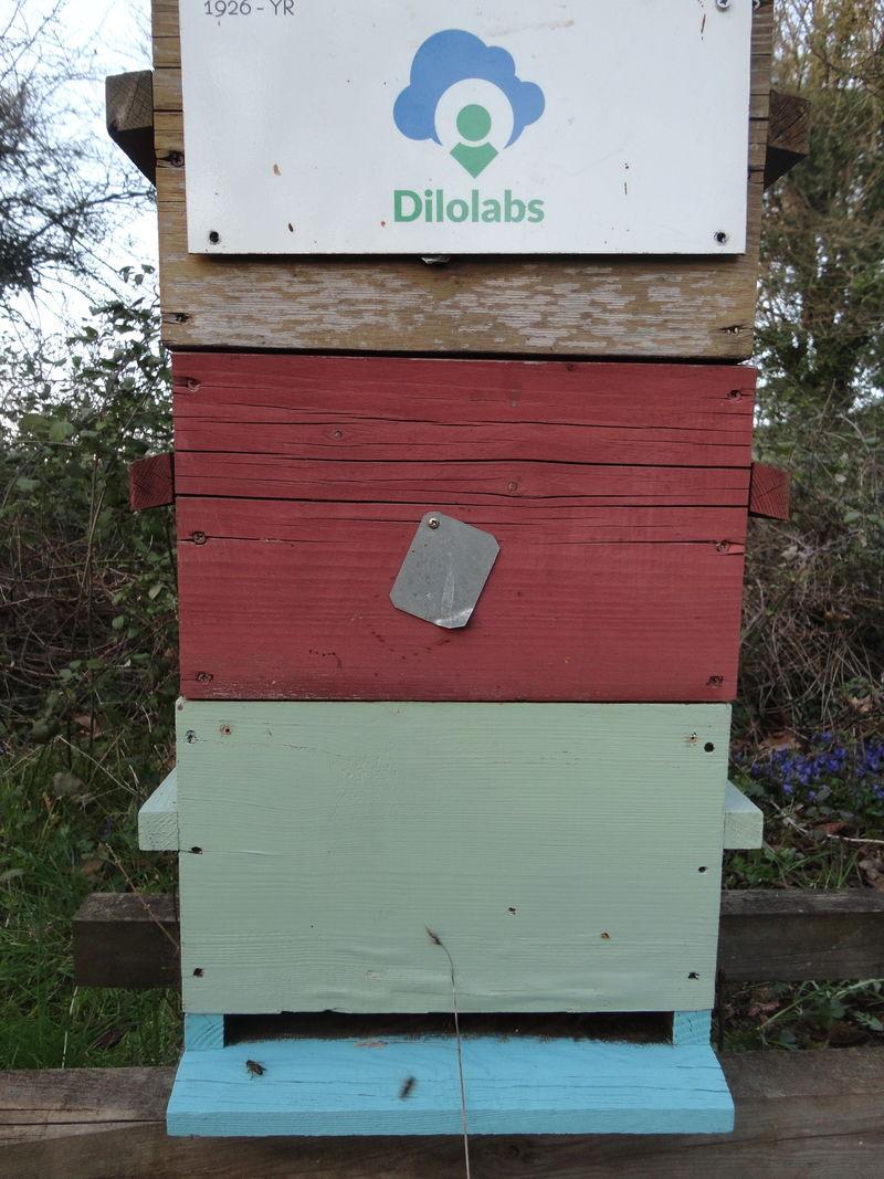La ruche CENTURY 21 IMMOBILIERE JAURES