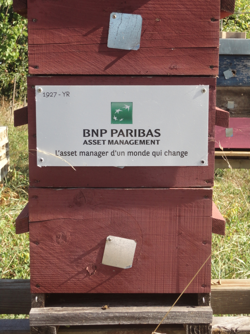 La ruche BNP PARIBAS ASSET MANAGEMENT France