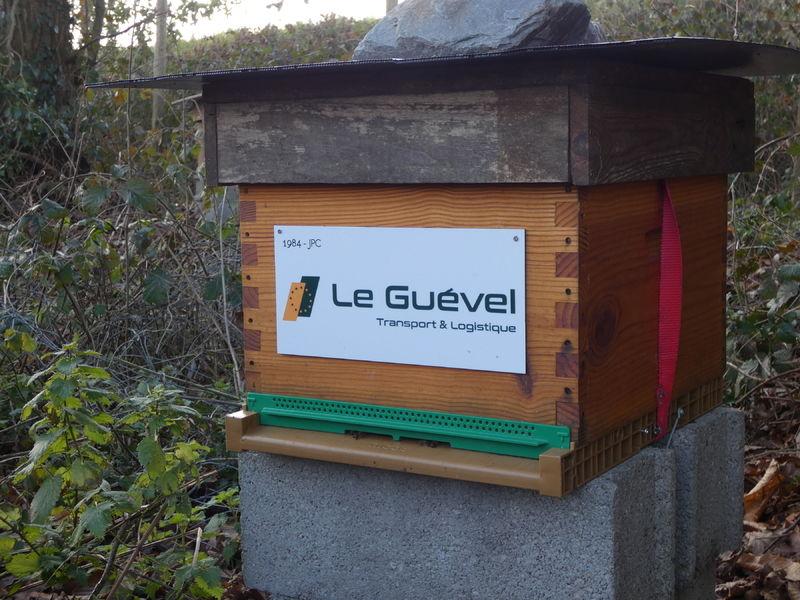 La ruche Astre - Le Guevel