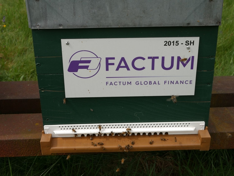 La ruche FACTUM FINANCE