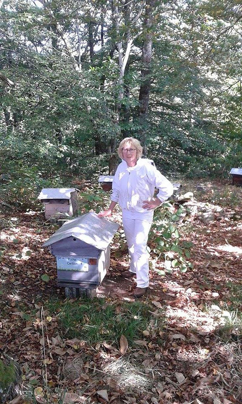 La ruche Carillon