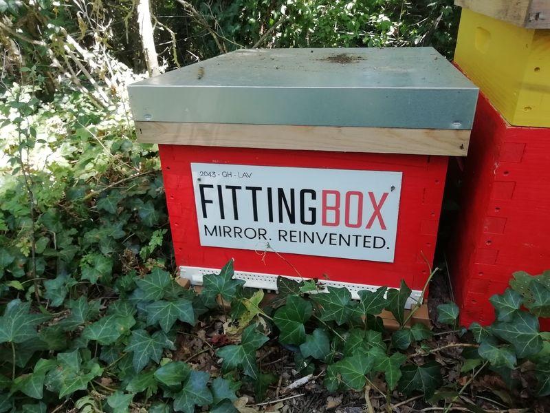 La ruche Fittingbox