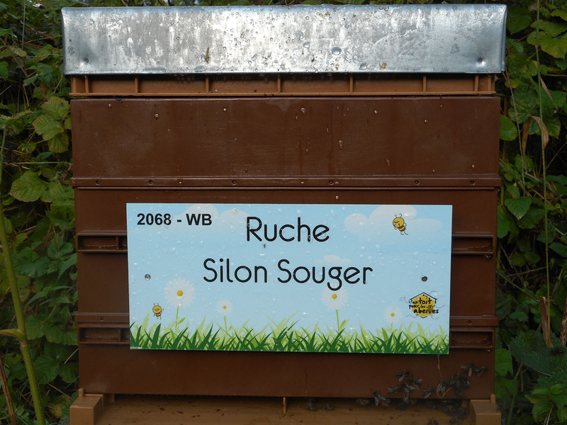 La ruche Silon Souger