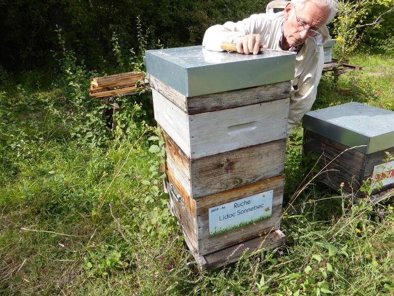 La ruche Lidoc Sonnebec