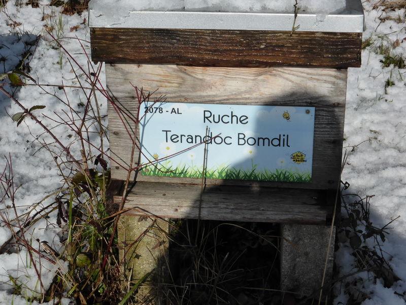 La ruche Terandoc Bomdil