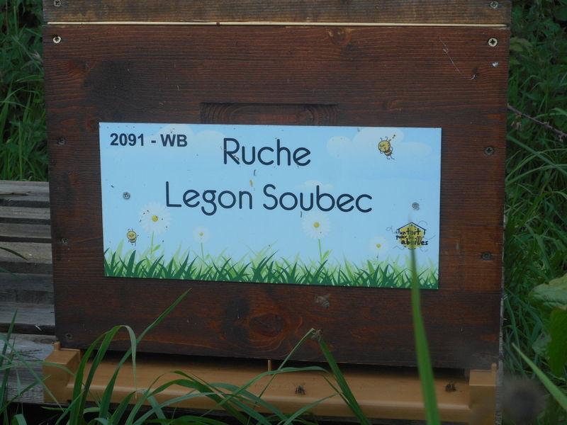 La ruche Legon Soubec