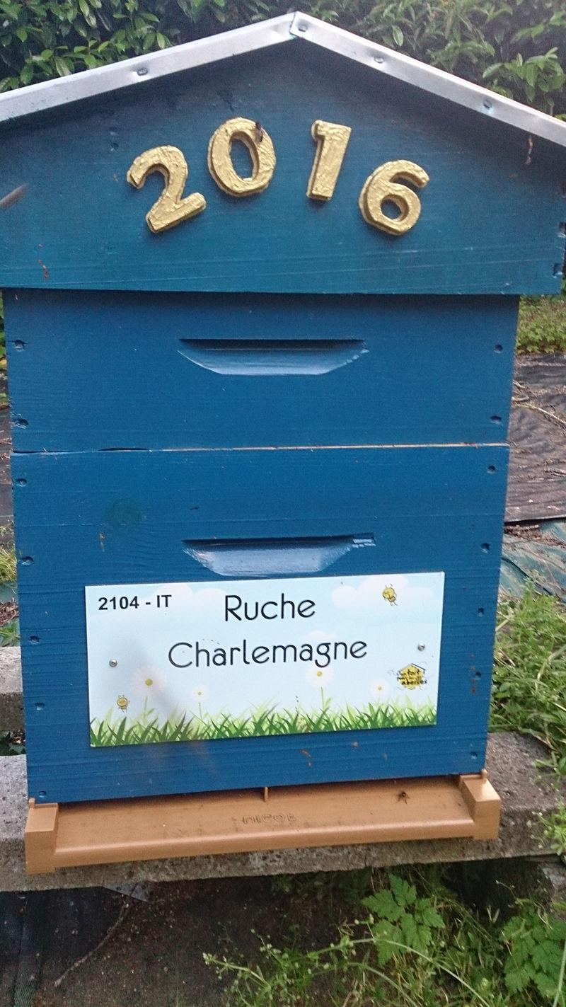 La ruche Charlemagne