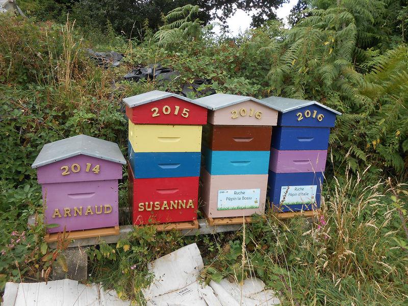 La ruche Pépin le Bossu