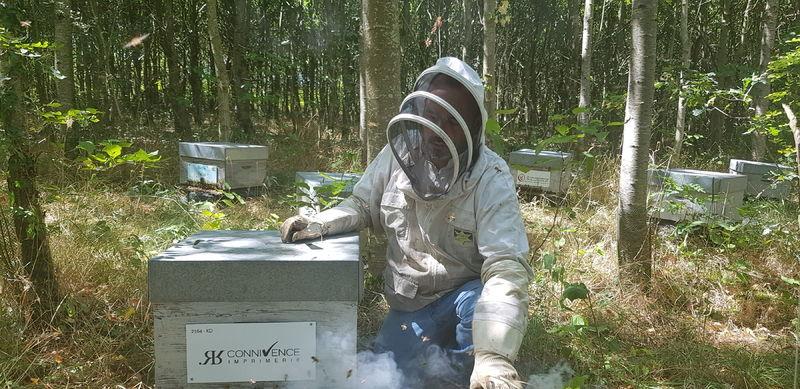 La ruche IMPRIMERIE CONNIVENCE