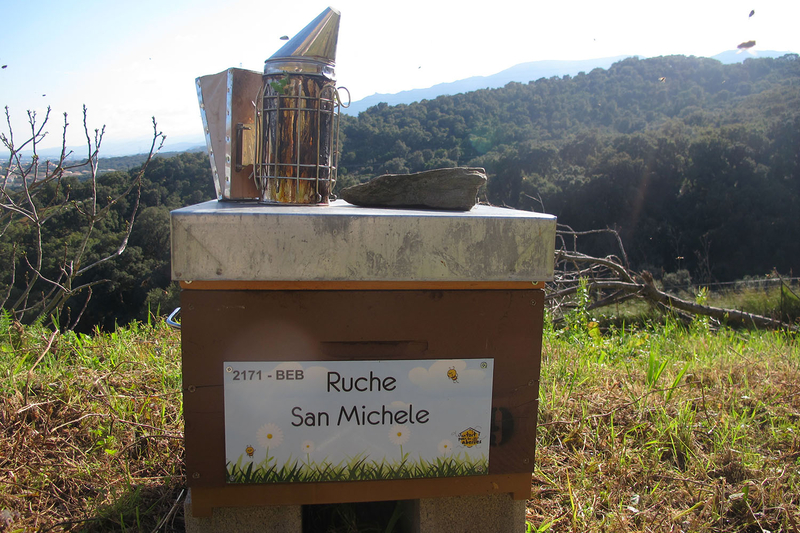 La ruche San Michele