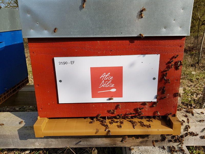 La ruche Alice Délice Lille