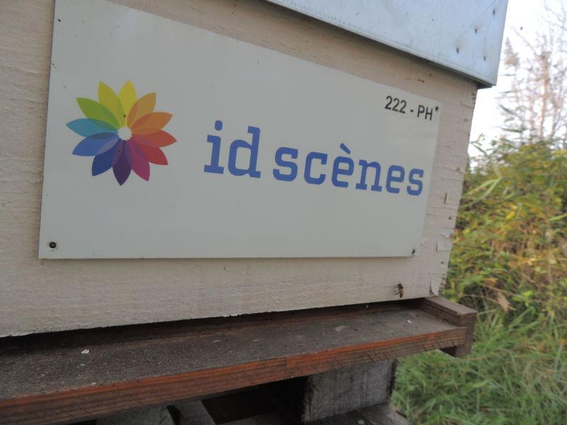 La ruche Id scenes