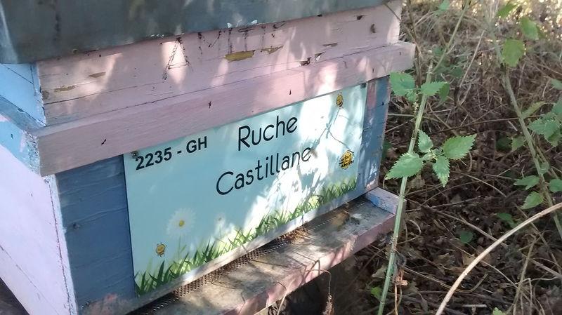 La ruche Castillane
