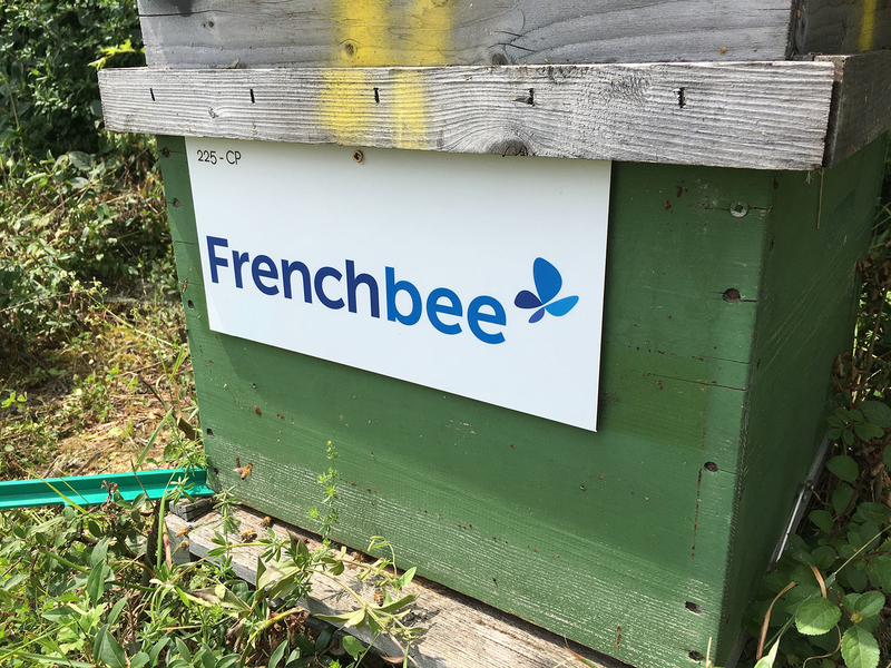 La ruche French bee
