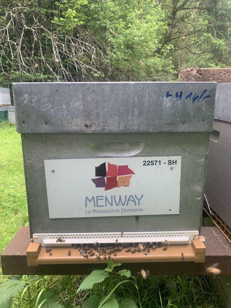 La ruche Menway holding