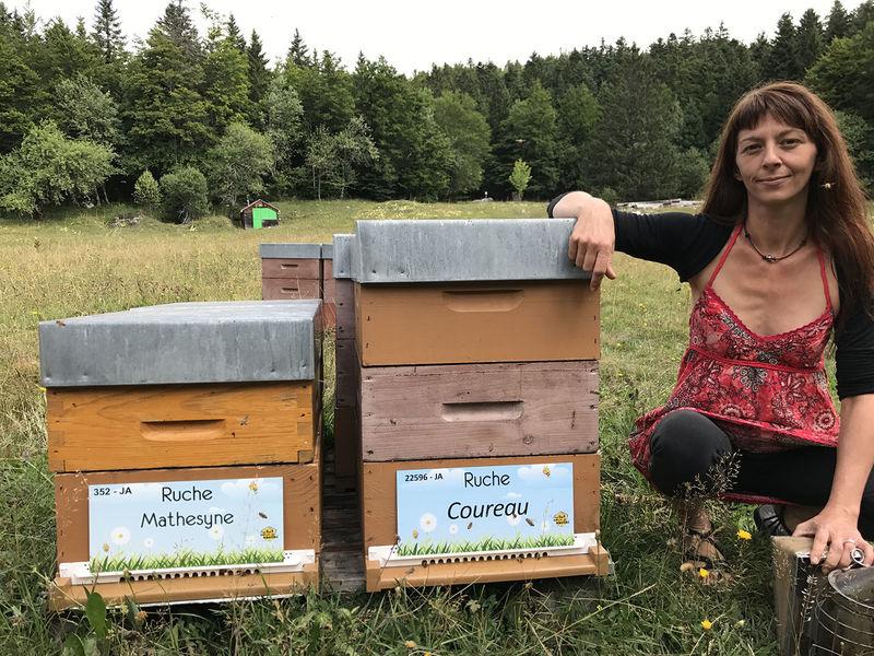 La ruche Coureau