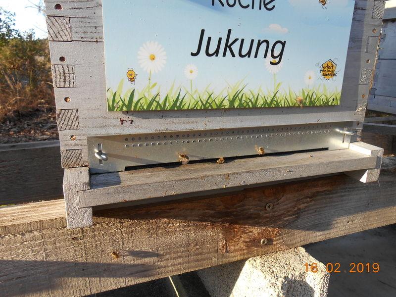 La ruche Jukung